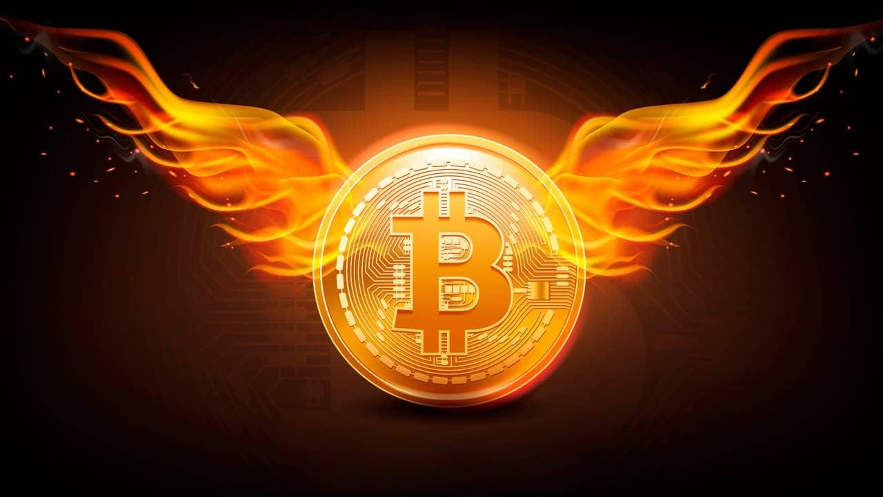 ماذا يعني حرق العملات الرقمية ولماذا يقوم المطورون بذلك؟